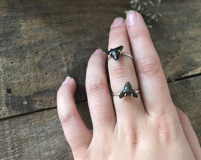 shark tooth ring size 6, fossilized sharks tooth, unique engagement ring, thin band stacking ring, textured stack ring, fall jewelry trends