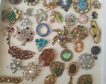 35 beautiful broaches and display case!