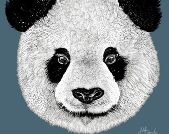 Panda print drawing Panda illustration poster A3 size Panda art
