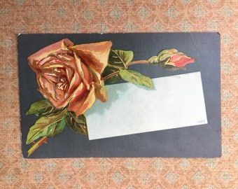Lovely Edwardian Era Postcard with Peach Rose
