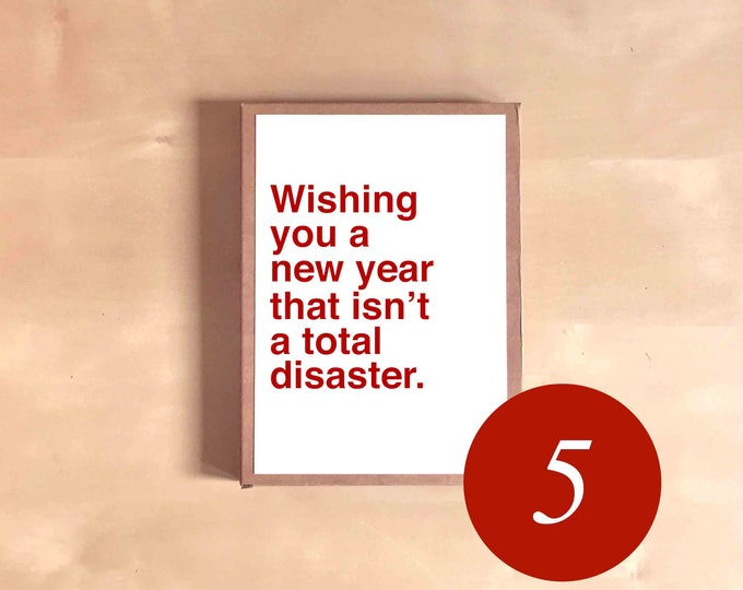 Funny Holiday Card Set - Funny Christmas Cards - Boxed Holiday Cards - Holiday Gift - Wishing you a new year that isn't a total disaster.