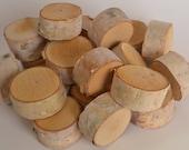 Birch Log Slices