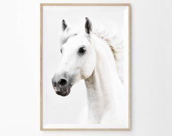 Horse Photography Print, White Horse Printable Wall Art, Horse Large Poster Download, Black and White Horse Animal Photo Download hc1c3c1