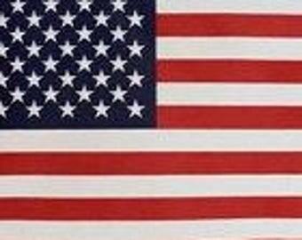 American Flag Fabric Panel