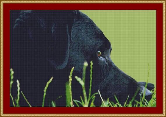 Black Labrador Cross Stitch Pattern /Digital PDF Files /Instant downloadable