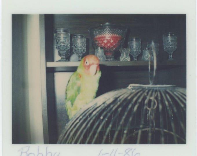 Vintage Snapshot Photo: Bobby, 1986 [81638]