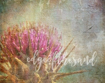 digital download thistle grunge painting scrapbooking floral flower weed background art paper craft