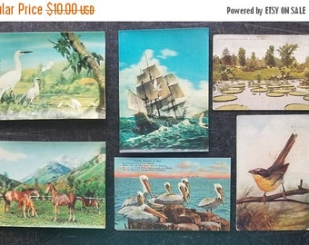 ON SALE Vintage Postcards Lot of 6