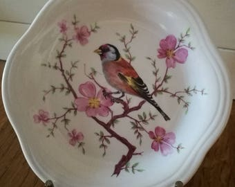Royal Worcester Palissy small bird plate.