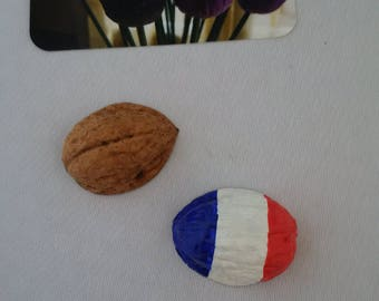 France flag Magnet