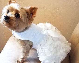 Best 25+ Dog wedding dress ideas on Pinterest | Blush bridesmaid ...