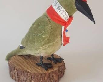 Wally Red Cap Woodpecker