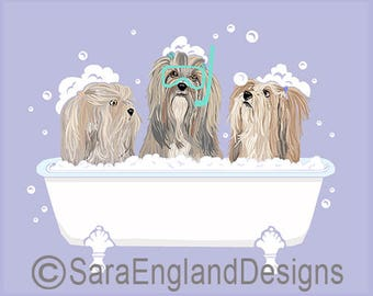 Spa Day - Lhasa Apso