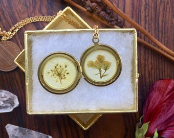 flower locket // botanic brass necklace // thin chain // unique gift // real pressed plant