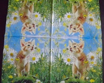 Paper towels 2: Red/daisies cats