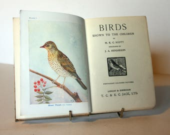 Illustrated Bird book with colour Plates 1900 Vintage childrens Ornithology Hardback Rare antique Wildlife nature