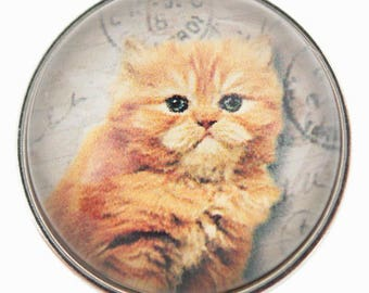 C0118 Art Glass Snap ~ Precious Ginger Kitty