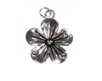 2 large charms in silver 2 cm in diameter