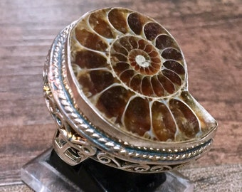 Huge Ammonite Fossil + Sterling Silver 925 Statement Ring Size  8