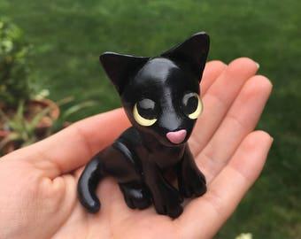Black Kitten- Cinders