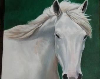 Custom horse portraits