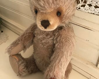 Antique Steiff Worn and Loved Mohair Bear and Ladybug