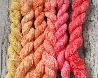 It's all peachy. Superwash merino and nylon sock yarn mini skein set. 120g 480m
