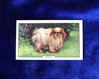 1938 Japanese Dog Art Cigarette Card Gallaher Ltd. Mother's Day!