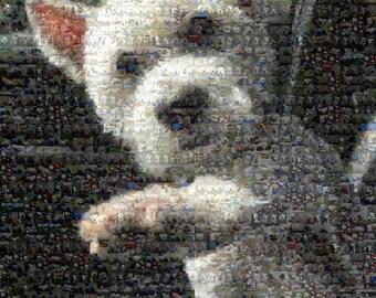 Custom Photo Mosaic