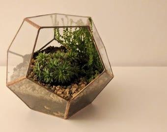 Glass Terrarium - Dodecahedron Terrarium / Pentagonal / Geometric Terrarium / Display Box / Candle Holder by Geodesium