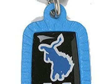 Detroit Lions NFL Keychain & Keyring - Rectangle