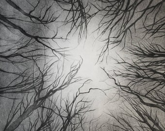 Forests, original engraving, drypoint etching