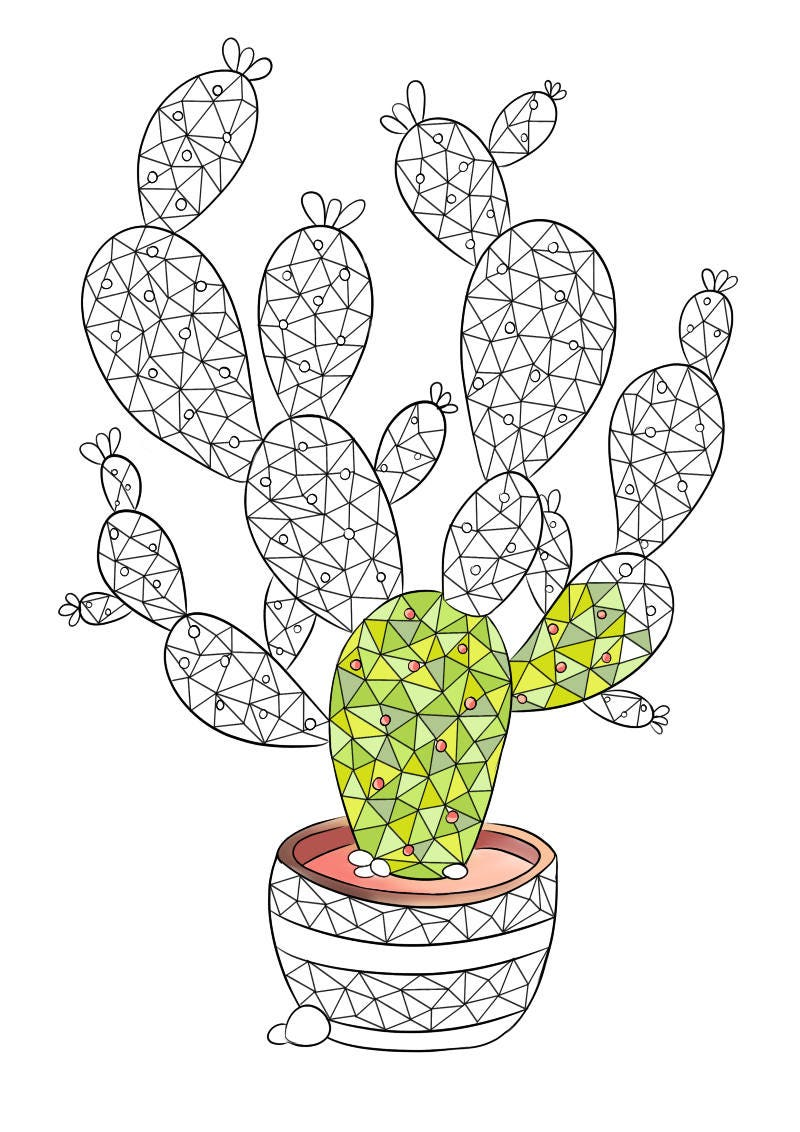 zoom - Prickly Pear Cactus Coloring Page