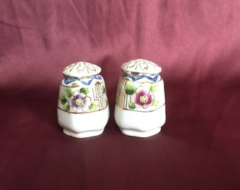 Vintage Hand Painted Salt and Pepper Shakers Made in Japan