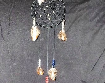 Black duck feather with a shark tooth dream catcher. This dream catcher would be a great gift for a young man.