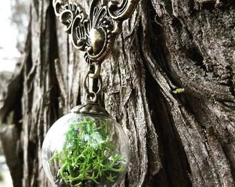 Terrarium Bead Necklace