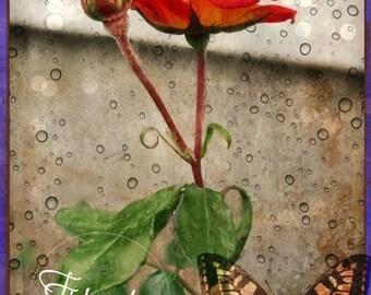 Botanical Art Card 1