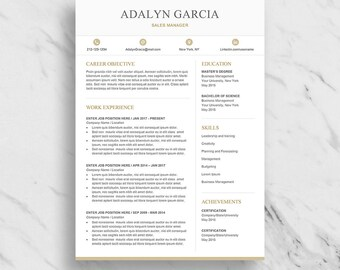 professional resume template for word modern resume design cv template for word two - Download Professional Cv Template