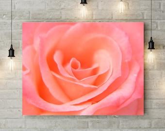 Pink Rose Print - Digital Download, Pink Rose Art Print, Printable Pink Rose, Pink Rose Poster, Pink Bedroom Decor, Pink Flower Print