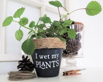 Funny plant pot. I wet my plants. Funny Plant pun potter. Succulent Planter. Indoor Planter. Cactus Pot. Plant Pun. Funny Christmas gifts.