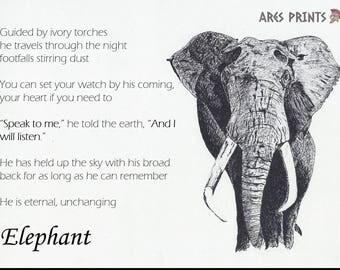 Elephant - Illustration - Print