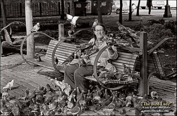 THE BIRD LADY, Occidental Plaza, Seattle, Washington