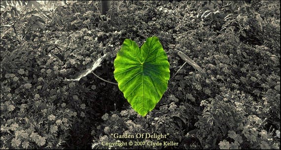 GARDEN Of DELIGHT, Vancouver BC, Canada, Clyde Keller photo, 2007