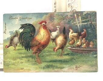 Vintage Easter Postcard, Vintage Postcard, Easter Postcard, Easter Ephemera, Chickens in a Field Trimmed in Gold