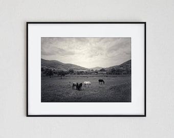HORSES VALLEY | instant download, printable photo, wall art, inspiration, travel, landscape, travel, adventure, black and white, mountain