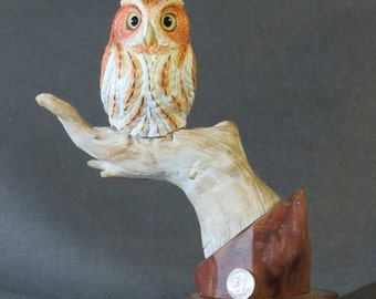 Miniature Red Phased Screech Owl