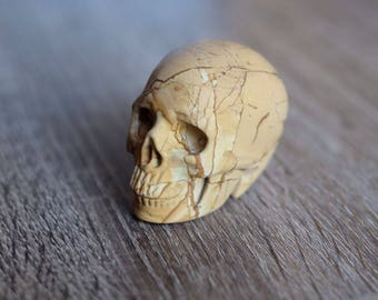RESERVED - Picture Jasper Stone Carved Crystal Skull