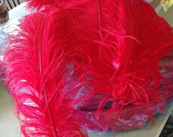 Bright red ostrich feathers- wedding/decor