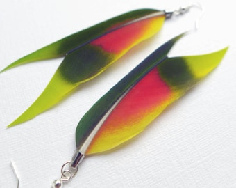 Feather Dangle Earrings, one of a kind Amazon parrot feather earrings, jewelry for her