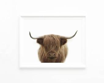 Highland Cow Art Print, Download Printable Photography, Farm Nursery Prairie Photo Printable,Farm Animal Wall Art, Digital Download, hc1c